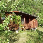 My aunt's summer cottage